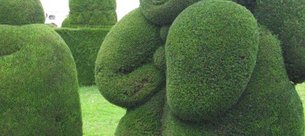 Topiaires Jardin