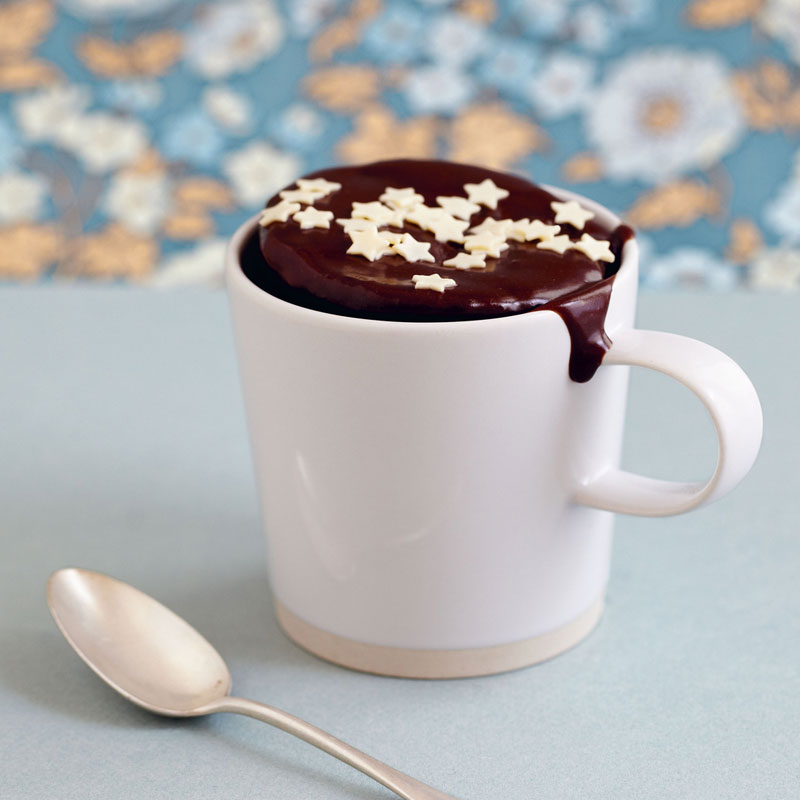Mug En Tasse– Comptoir Au Jardinier CakeDu Plaisir 2WHD9EI