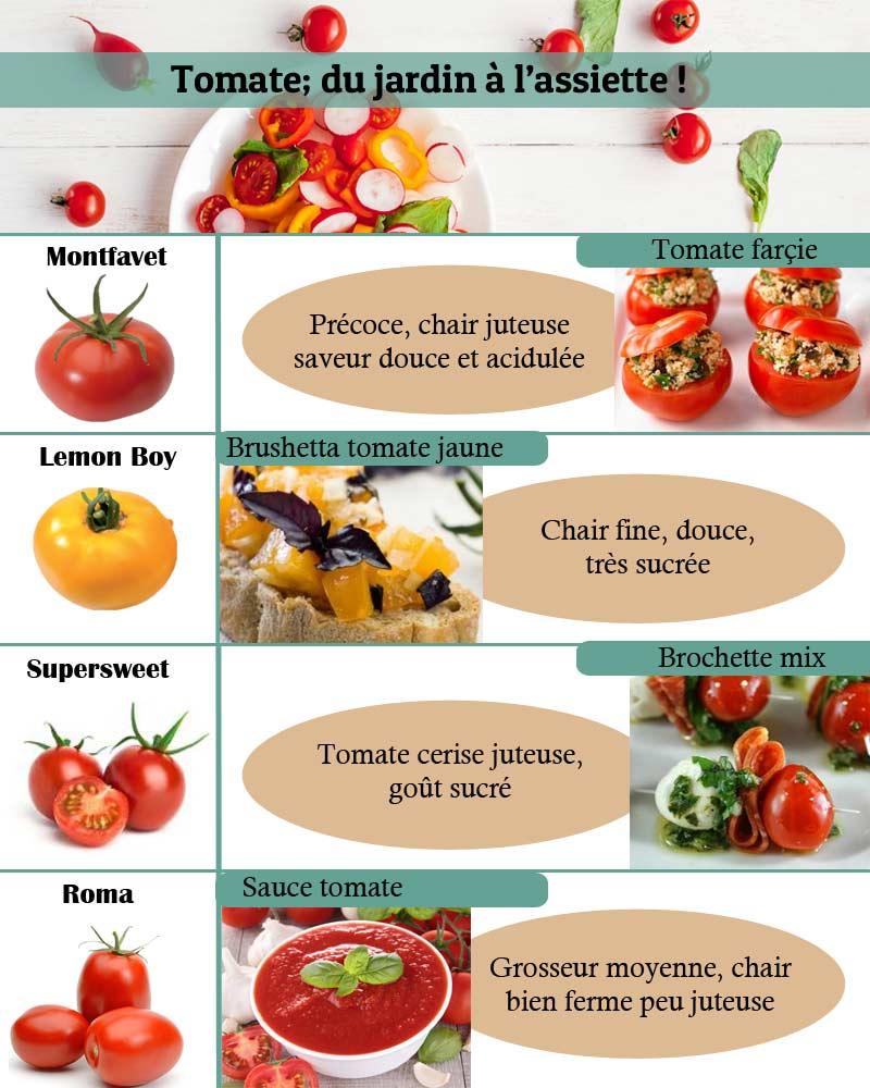 Quelles variétés de tomates choisir
