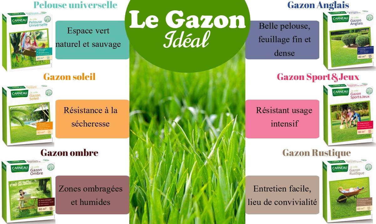Comment choisir son Gazon