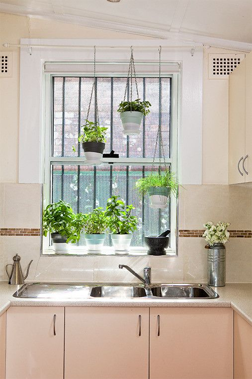 Inspiration d corez vos rebords de fen tre au comptoir - How to hang plants in front of windows ...