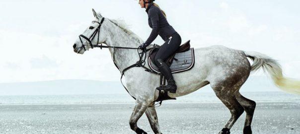 nouvelle-collection équitation