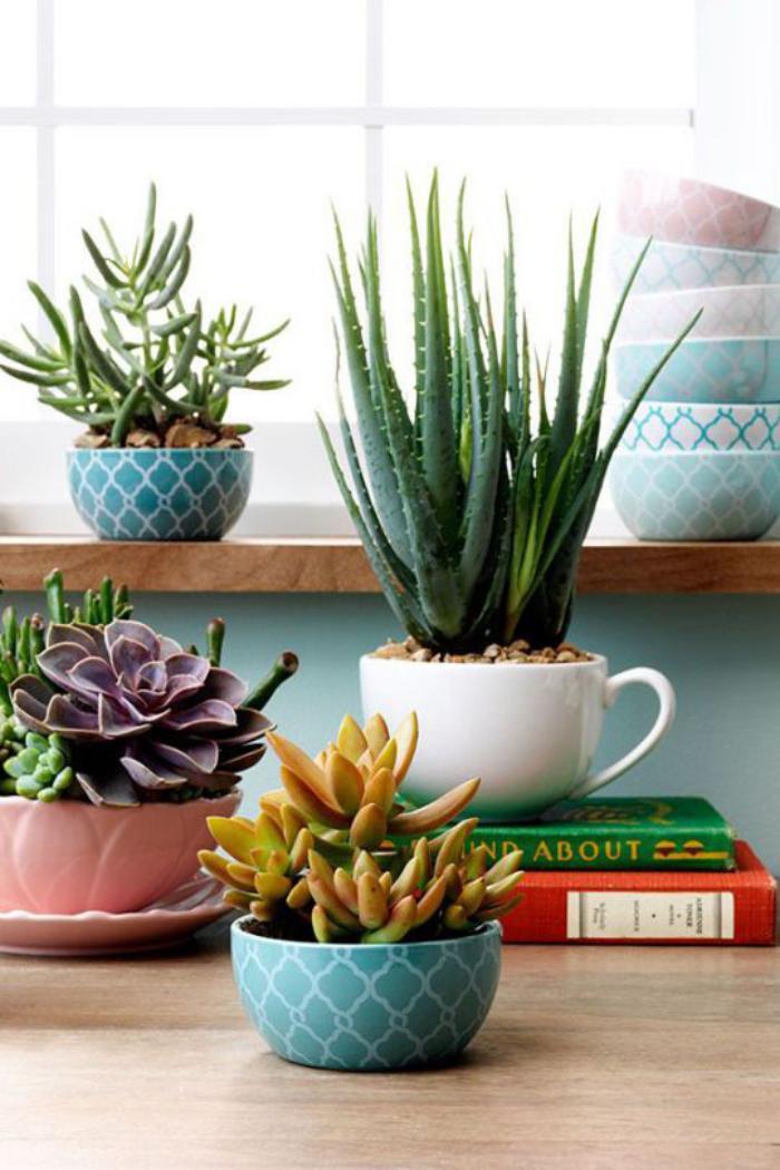 purifiez votre maison avec les plantes d polluantes au comptoir du jardinier. Black Bedroom Furniture Sets. Home Design Ideas