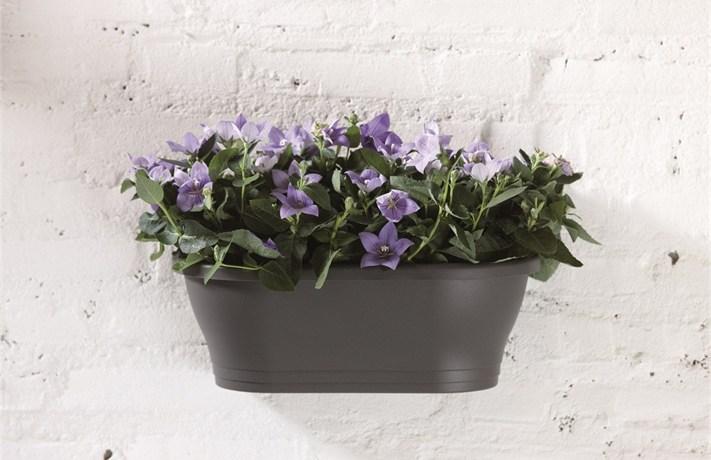 Pots muraux