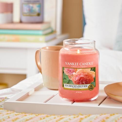 Rose succulente Yankee Candle
