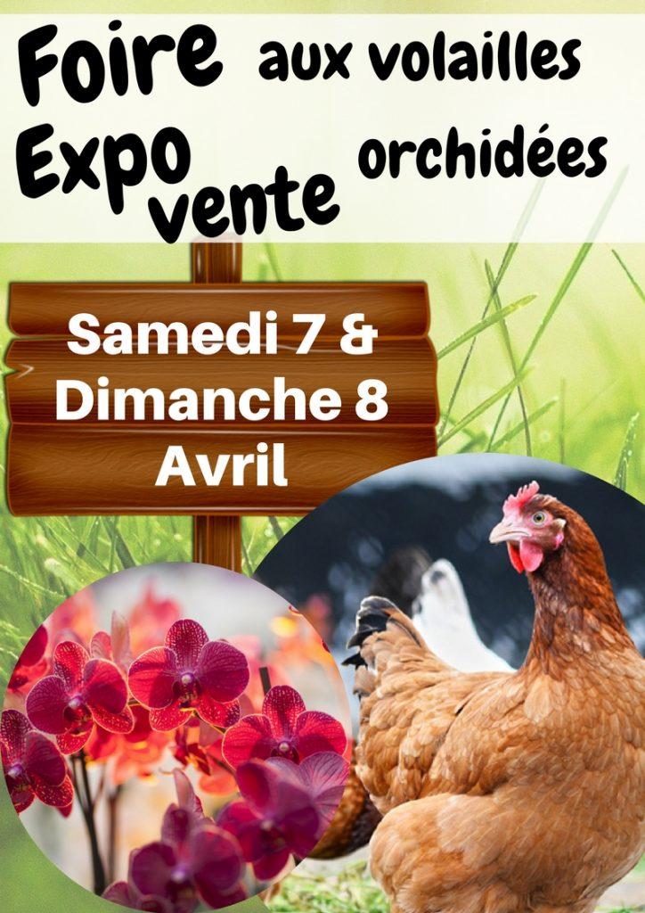 foire aux volailles expo/ventes d'orchidées