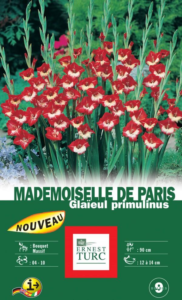 glaiuel Mademoiselle de Paris