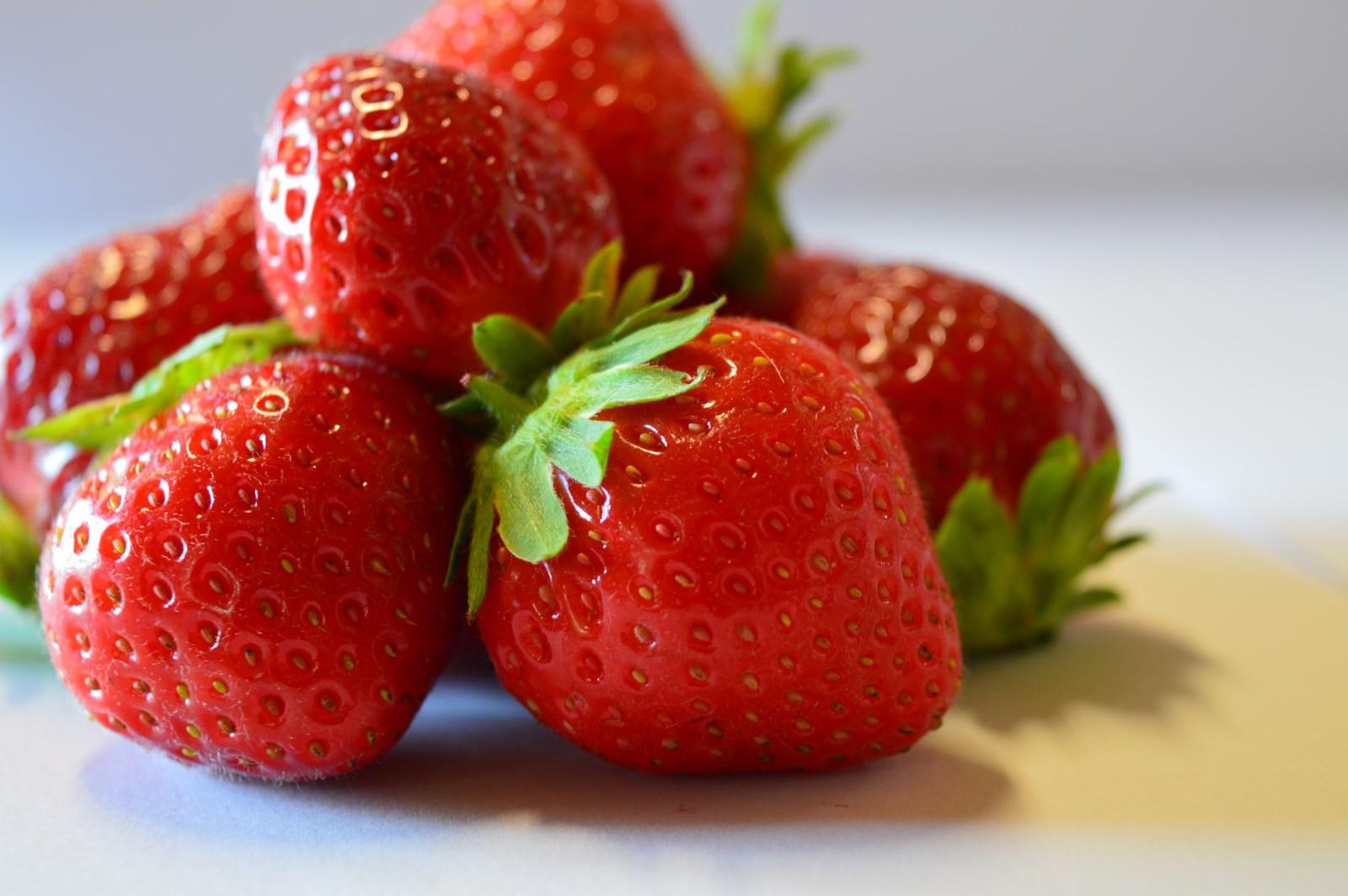Choisir sa vari t de fraise au comptoir du jardinier for Fraisier darselect